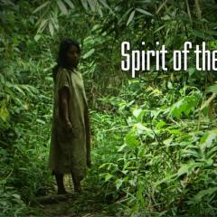 Amazonia Adventure / Amazońska Przygoda / Emil Witt / 16 maja 2015