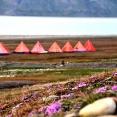 Spitsbergen czyli pod namiotem w Arktyce / 21 sierpnia 2015
