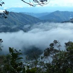 """Dlaczego nie warto """"odkładać"""" Borneo na później? / 23 października 2015"""