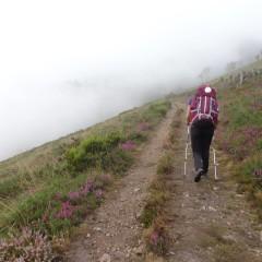 Camino Primitivo de Santiago – podróż pełna spotkań / 12 grudnia 2015