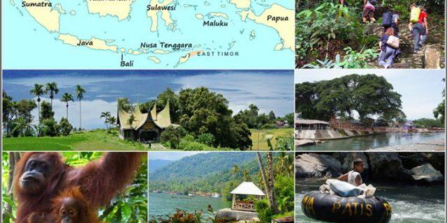 Blondynka na zielonej Sumatrze