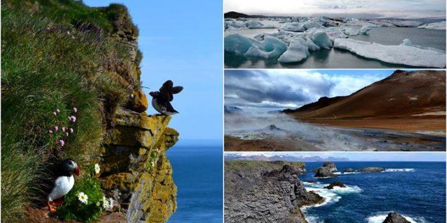 W pół roku dookoła Islandii