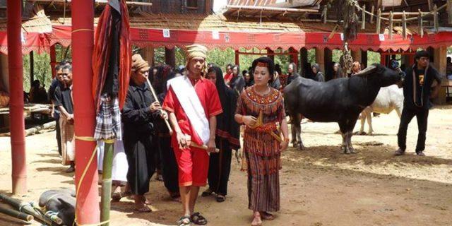 Indonezja. Opowieści z Sulawesi.