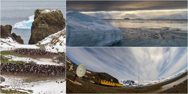 Arktyka&Antarktyka – dwa lata w krainie zimna / Free