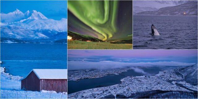 Na kraniec północy w poszukiwaniu zorzy – Oslo, Spitsbergen, Tromso / Free